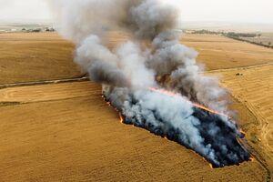 آتش بادکنک های آتش زا در فلسطین اشغالی
