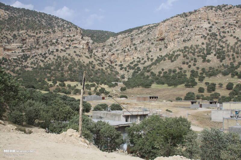 پدیده «کوه خواری» در شهر ایلام