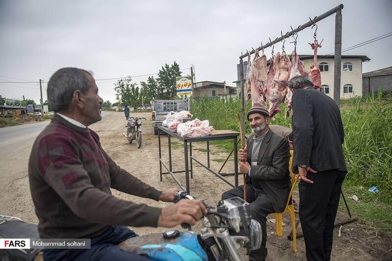 شاه رضا  بازار