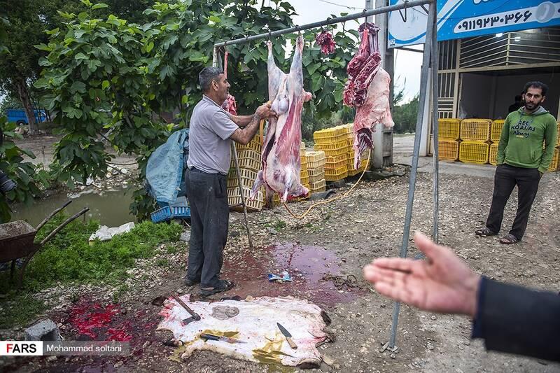مردم این منطقه دام های خود را در نزدیکی خانه خود کشتار میکنند تا به عرصه فروش بگذارند