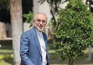 اختصاصی| علی اکبر صالحی: فعلاً تصمیم قطعی برای کاندیداتوری انتخابات ۱۴۰۰ نگرفتهام؛ در حال بررسی هستم