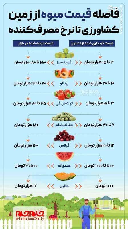 فاصلهقیمت میوه از زمین کشاورزی تا نرخ مصرف کننده