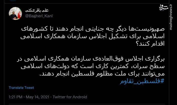 انتقاد علی باقری از عدم تشکیل فوری اجلاس همکاری اسلامی