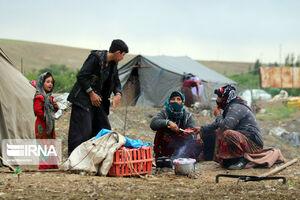 عکس/ زندگی عشایر در مراتع همدان