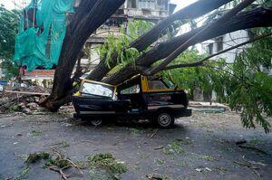خسارت های طوفان در شهر بمبئی و ایالت گجرات هند