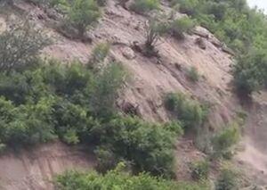 فیلم/ رانش زمین در رودبار