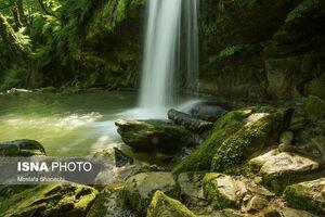 عکس/ هفت آبشار پلکانی در دل جنگل