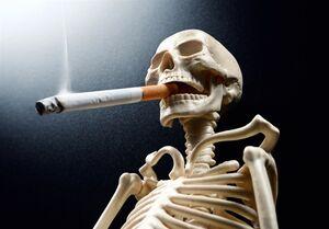 سیگار بیشتر از کرونا جان میگیرد