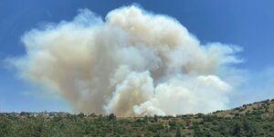 آتشسوزی بزرگ در جنوب غرب قدس؛ دستور تخلیه شهرک صادر شد +فیلم و عکس