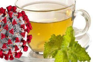 «سرب» چای با چند دقیقه دمکردن کاهش مییابد؟