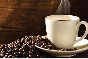 افزایش احتمال ابتلا به بیماری «آب سیاه» با کافئین