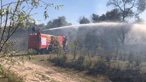 ۱۰ هکتار از جنگلهای حمیدیه در آتش سوخت