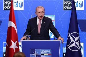 اردوغان: مرزهای ترکیه مرزهای ناتو هستند
