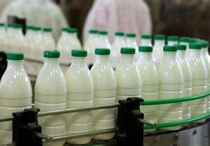 قیمت شیر