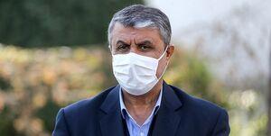 وزیر راه در حرم حضرت زینب (س) در دمشق رأی داد +عکس