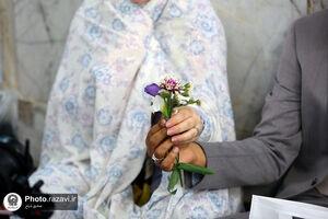 عکس/ آغاز زندگی مشترک در پناه امام هشتم