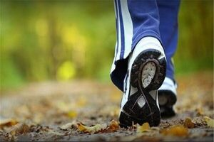 پیادهروی بهترین ورزش برای کاهش وزن است