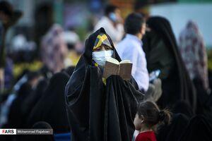 عکس/ حال و هوای حرم رضوی در شب میلاد امام رضا(ع)