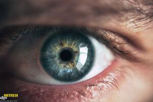گوشهای از بافت چشم انسان+ فیلم