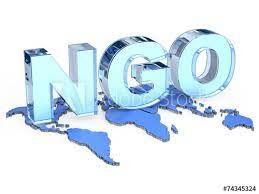 """""""عفو بین الملل"""" فقط یک NGO است نه سازمان رسمی"""