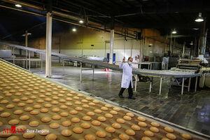 عکس/ کارخانه کیوان پس از احیا توسط دستگاه قضایی