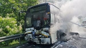عکس/ زخمی شدن ۱۵ کودک در تصادف دو اتوبوس