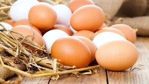 باورهای غلط درباره خوردن تخم مرغ