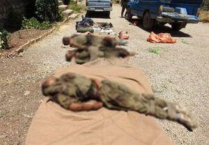 عکس/ لاشه ۵ تروریستی که امروز کشته شدند