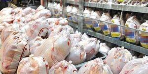 مرغ ها رهگیری می شوند