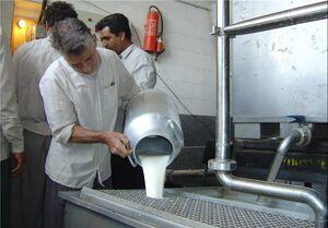 مخالفت دامداران با تصمیم دولت برای افزایش قیمت شیرخام
