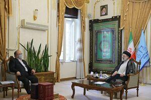 عکس/ دیدار وزیر کار و رفاه اجتماعی با رئیسی
