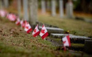اگه زیر همه ۱۵۰ مدرسه کودکان بومی کانادا حفاری بشه!