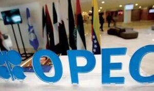 رویترز: گفتگوهای اوپک پلاس از سر گرفته شد