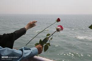 عکس/ گلباران محل شهادت ۲۹۰ مسافر ایرباس