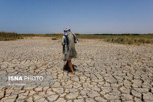 عکس/ خشکی هورالعظیم در دشت آزادگان