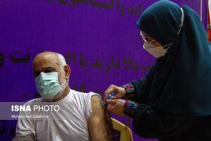 برکت به بوشهر رسید + تصاویر