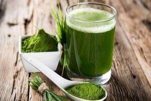 ترکیبات بیواکتیو موجود در جلبک به مهار کروناویروس کمک می کند