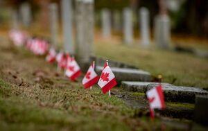 نذارید خبر کشف گور دسته جمعی جدید در کانادا عادی سازی بشه