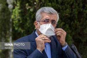 عکس/ حاشیههای هیات دولت در حیاط پاستور