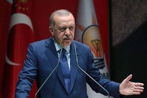 اردوغان: طمعی به سرزمین دیگر کشورها نداریم