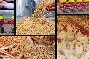 بدعهدی وزیر جهاد در جلوگیری از خام مصرفی نهادهها