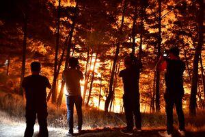 مردم ترکیه در حال فرار از مناطق آتش سوزی+ فیلم