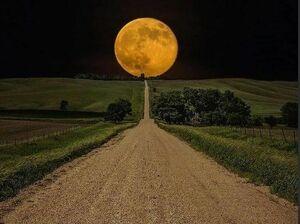 تصاویر زیبا از ماه