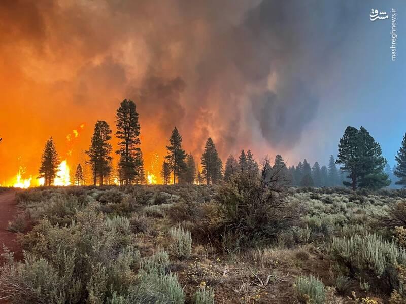 آتش سوزی در جنوب شرقی اورگان