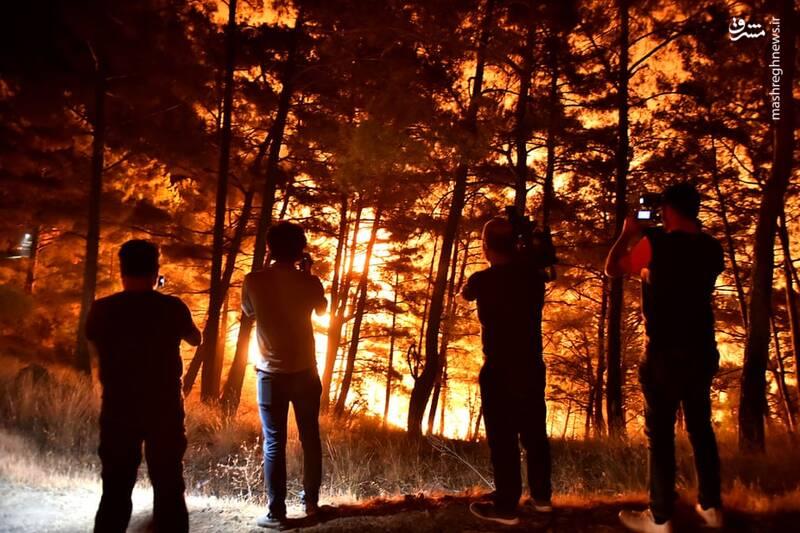 آتش سوزی جنگلهای Mersin ترکیه