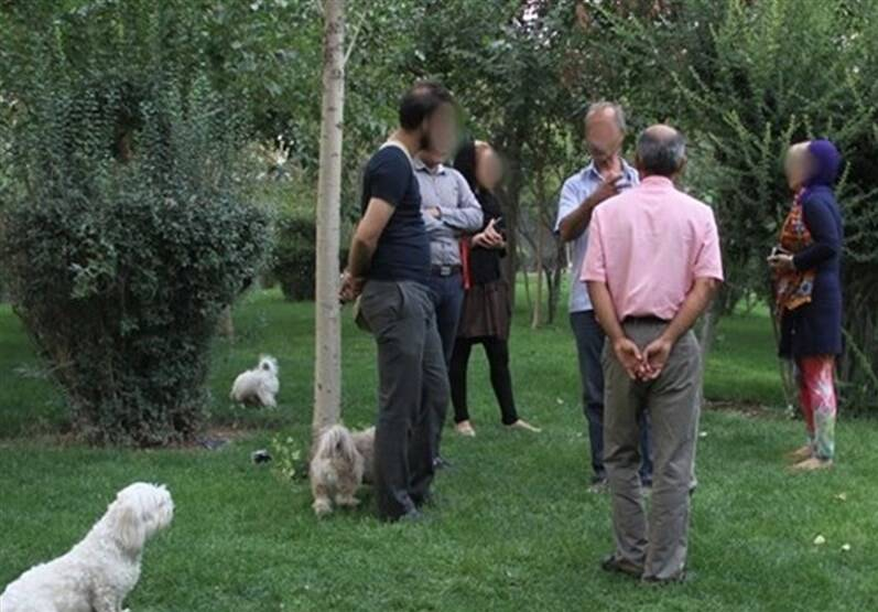 تصمیم شورای ششم شهر تهران درباره سگ گردانی