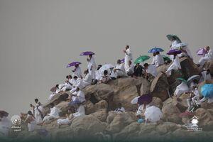 عکس/ حال و هوای صحرای عرفات