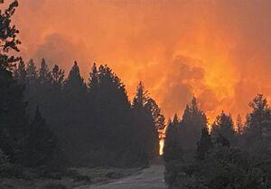 تعویق در پروازهای غرب آمریکا به علت آتشسوزی