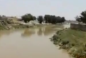 وضعیت رود کرخه در سوسنگرد + فیلم