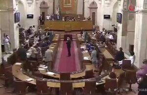 فیلم/ موش بزرگ در مجلس
